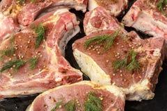Сырцовое сырое сочное мясо стейка с укропом, перцем и специями на стороне Стоковое Изображение RF