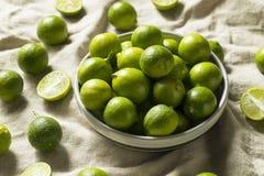 Сырцовые зеленые органические ключевые известки стоковое фото