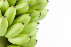 Сырцовые золотые бананы на изолированной еде плодоовощ банана Mas Pisang белой предпосылки здоровой Стоковые Изображения RF