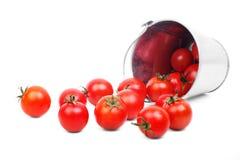 Сырцовые зрелые томаты Стоковые Фото