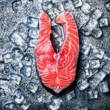 Сырцовые кол и лед форели на предпосылке металла Стоковые Изображения