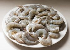 Сырцовые креветки на белой плите стоковая фотография
