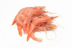 Сырцовые креветки на белой предпосылке Стоковая Фотография