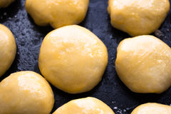 Сырцовые маленькие плюшки перед печь Стоковая Фотография RF