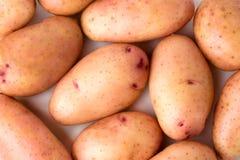 Сырцовые молодые картошки на белой предпосылке, конец-вверх Стоковое Изображение