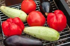 Сырцовые овощи томат, цукини и баклажан Стоковая Фотография