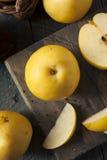 Сырцовые органические желтые груши Яблока азиата Стоковое Изображение