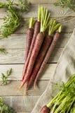 Сырцовые органические моркови пурпура Heirloom стоковые фото