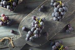 Сырцовые органические фиолетовые виноградины согласия Стоковые Фото