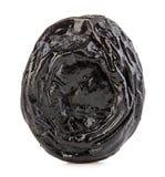 Сырцовые органические черносливы, высушенные сливы, который курят конец-вверх черносливов на белой предпосылке Стоковая Фотография