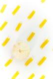 Сырцовые органические яичка макаронные изделия и чеснок Стоковые Изображения