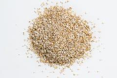 Сырцовые песчинки ячменя Стоковое Изображение RF