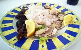 сырцовые продукты моря Стоковое Изображение RF