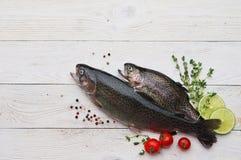 Сырцовые рыбы форели на белой доске стоковая фотография rf
