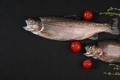 Сырцовые рыбы форели на черной ткани льна стоковое фото