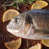 Сырцовые рыбы dorado с розмариновым маслом и солью моря Стоковые Фотографии RF