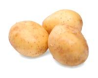 Сырцовые, свежие и сырые картошки, изолированные на белой предпосылке овощи продуктов свежего рынка земледелия Естественная veget Стоковое Изображение