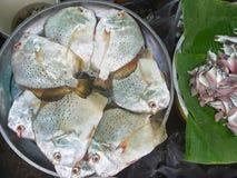 Сырцовые свежие рыбы в рынке Стоковая Фотография