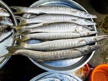 Сырцовые свежие рыбы в рынке Стоковые Фото