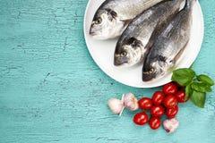 Сырцовые свежие рыбы dorado на белых плите и овощах на голубой таблице Стоковое Изображение