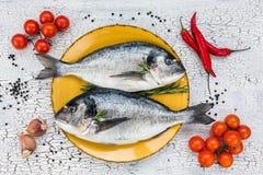 Сырцовые свежие рыбы dorado на желтых плите и овощах на белой таблице Взгляд сверху Стоковое фото RF