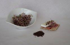 Сырцовые фиолетовые ростки капусты с ветчиной стоковое изображение