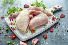 Сырцовые филе supremes куриной грудки с чилями, corns перца и тимианом на белой деревянной прерывая доске Стоковые Изображения