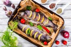 Сырцовые форели удят на блюде выпечки, взгляд сверху Стоковые Изображения