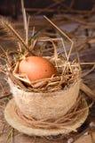Сырцовые яичка в гнезде сена Стоковое Изображение RF