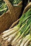 Сырцовые calcots, сладостные луки, типичные Каталонии, Испании Стоковые Фото