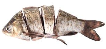 Сырцовые crucian стейки Стоковое Фото
