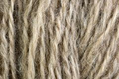 Сырцовый белый крупный план макроса шарика потока шерстей Стоковое Изображение RF