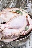Сырцовый день Турция благодарения подготавливает быть зажаренным в духовке стоковая фотография rf