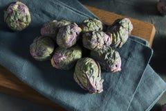 Сырцовый зеленый и фиолетовый brussel - ростки Стоковая Фотография RF