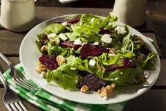 Сырцовый зеленый салат свеклы и Arugula Стоковое фото RF