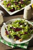 Сырцовый зеленый салат свеклы и Arugula Стоковое Фото