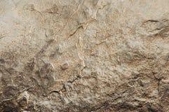 Сырцовый каменный конец текстуры вверх Стоковое Фото