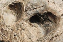 Сырцовый каменный конец текстуры вверх Стоковая Фотография