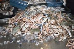 Сырцовый краб для продажи на новом рынке fishermans Стоковое фото RF