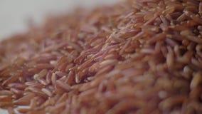 Сырцовый красный рис на таблице Красный крупный план риса : 4K Видео еды акции видеоматериалы