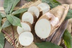Сырцовый крахмал на деревянном столе - Manihot юкки esculenta стоковые изображения
