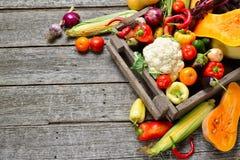 Сырцовый органический комплект свежих овощей в лесистой предпосылке коробки Сбор осени от сада Стоковые Изображения
