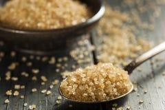 Сырцовый органический тростниковый сахар стоковое фото