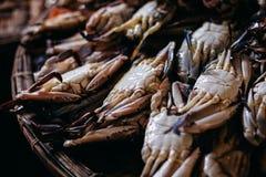 Сырцовый продукт моря crad на местном рынке в Азии Стоковые Фото