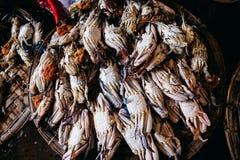 Сырцовый продукт моря crad на местном рынке в взгляд сверху Азии Стоковое Изображение