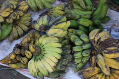 Сырцовый рынок банана стоковая фотография