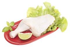 Сырцовый цыпленок Стоковая Фотография