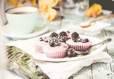 Сырцовый чизкейк ягоды vegan при разделанный кокос, Стоковое Фото