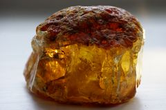 Сырцовый янтарный, желтый камень, Россия стоковые фотографии rf