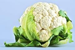 Сырцовый Cauliflower Стоковые Изображения